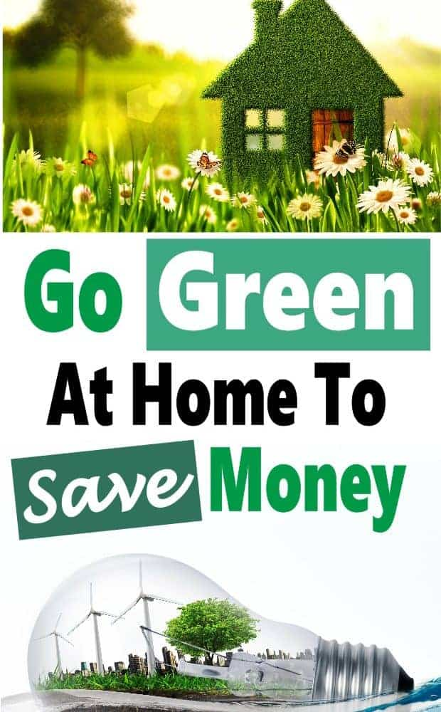 Going green not only helps our environment. it also helps us save money. There are many small changes we can make to go green and save more energy and waste less money. Click over to see how easy it can be to go green to save money.