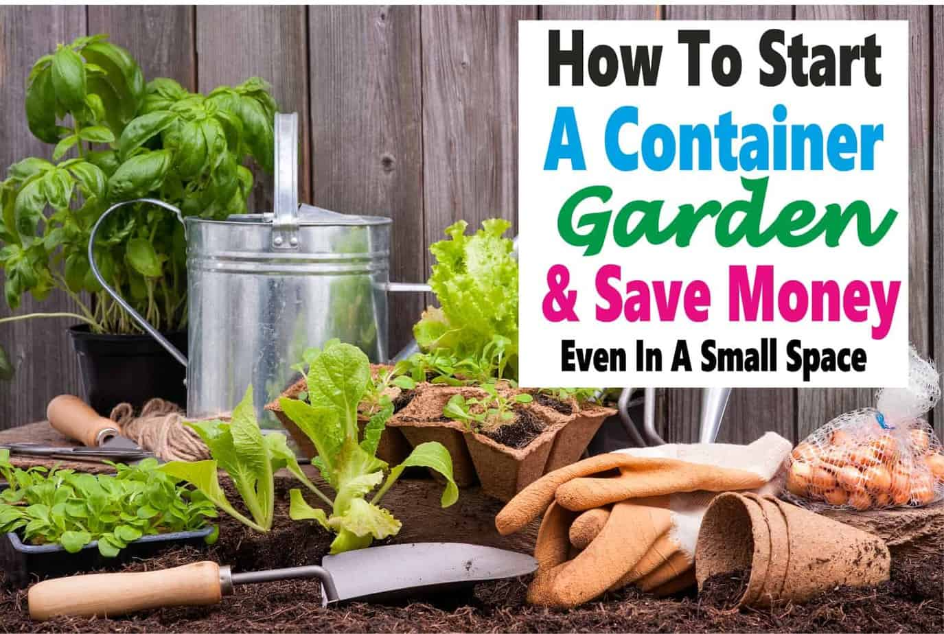 Container Gardening - A Clever Way to Save Money and Space ~ Gardening and growing your own food is a great way to save money and eat healthier for less & you don't need a huge space either. Read on to learn all the ins and outs of container gardening. garden | gardening | vegetables | save money | eat healthy | health #health #healthyeating #savemoney #garden #gardening #containergardening