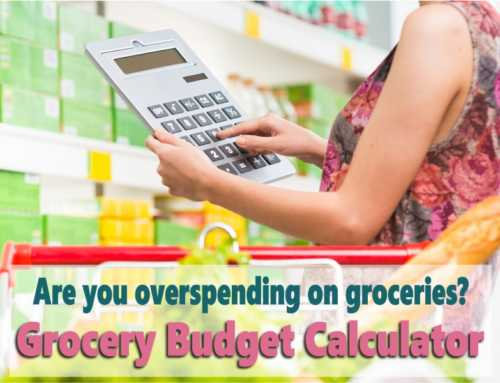 Grocery Budget Calculator: Is your grocery budget out of control?