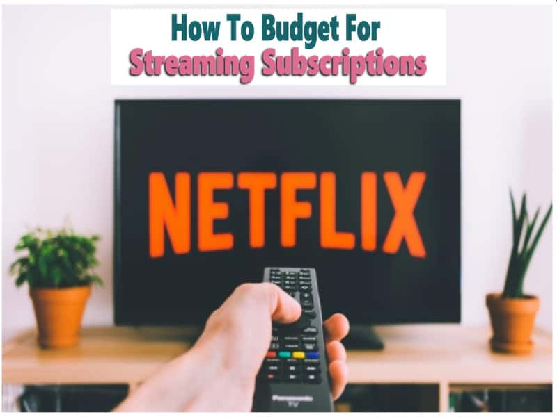 Budget for Steaming Subscriptions