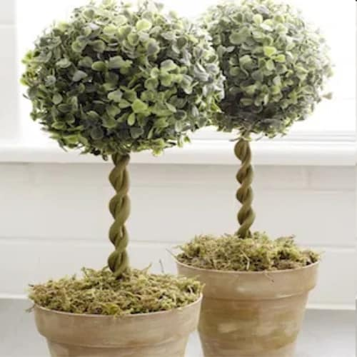 Decrotive DIY Farmhouse style topiary trees from dollar store supplies