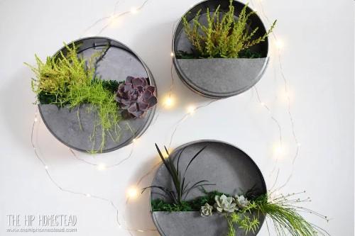 DIY Dollar Tree farmhouse decor wall planter
