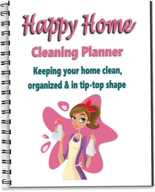 Cleaning Binder