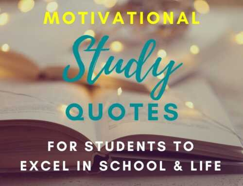 101 Motivational Study Quotes For Students To Excel In School